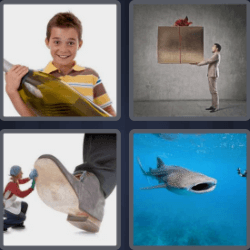 4 pics 1 word shark
