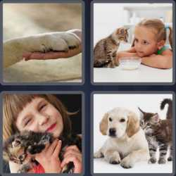 4-pics-1-word-3-letters-pet