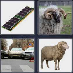 4-pics-1-word-3-letters-ram
