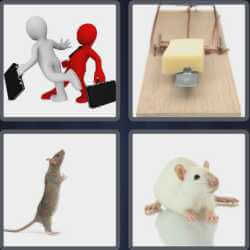 4-pics-1-word-3-letters-rat