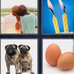 4 pics 1 word 3 letters eggs dogs