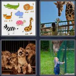 4-pics-1-word-3-letters-zoo