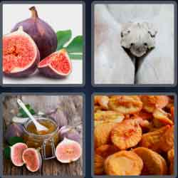 4-pics-1-word-3-letters-fig
