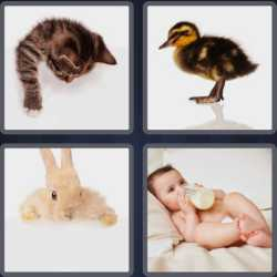 4 Pics 1 Word 4 Letters Baby