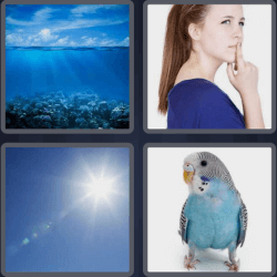 4 Pics 1 Word 4 Letters Blue