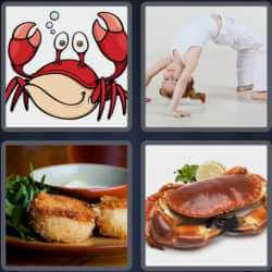 4 Pics 1 Word 4 Letters Crab