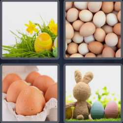 4-pics-1-word-4-letters-eggs
