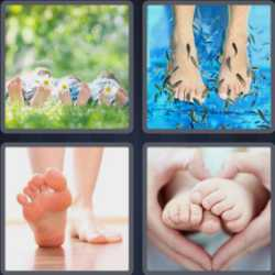 4 Pics 1 Word 4 Letters Feet