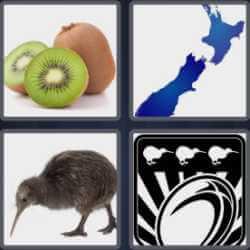 4-pics-1-word-4-letters-kiwi