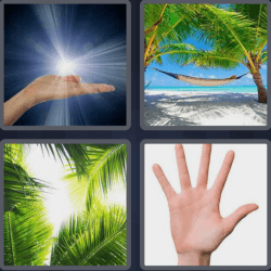 4-pics-1-word-4-letters-palm