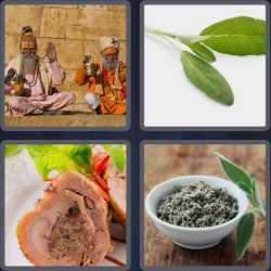 4 Pics 1 Word 4 Letters Sage