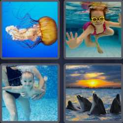 4-pics-1-word-4-letters-swim