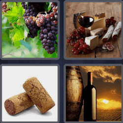 4-pics-1-word-4-letters-wine