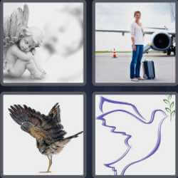 4 Pics 1 Word 4 Letters Wing