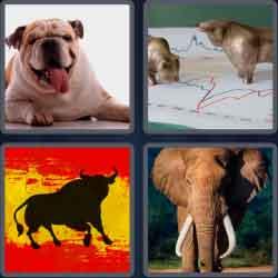 4-pics-1-word-4-letters-bull