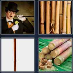 4 Pics 1 Word 4 Letters Cane