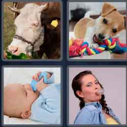 4 Pics 1 Word 4 Letters Chew