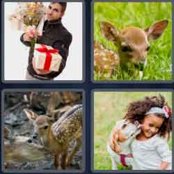 4-pics-1-word-4-letters-fawn