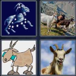 4-pics-1-word-4-letters-goat