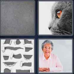 4 Pics 1 Word 4 Letters Gray