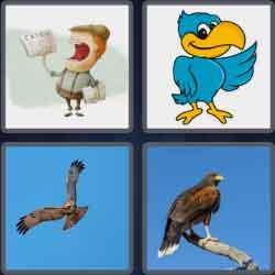 4-pics-1-word-4-letters-hawk
