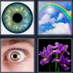 4-pics-1-word-4-letters-iris