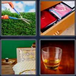 4 Pics 1 Word 4 Letters Neat