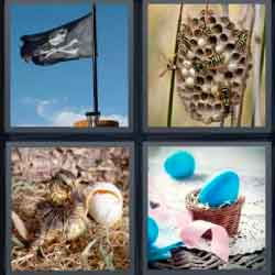 4 Pics 1 Word 4 Letters Nest
