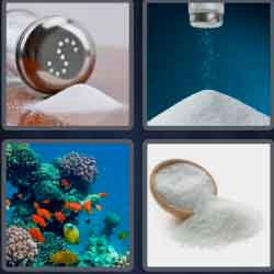 4-pics-1-word-4-letters-salt