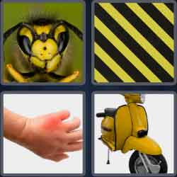 4 Pics 1 Word 4 Letters Wasp