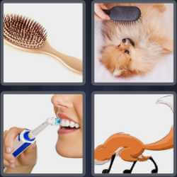 4-pics-1-word-5-letters-brush