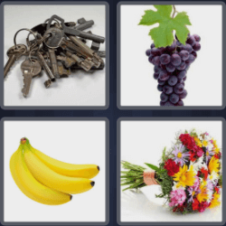 4 Pics 1 Word 5 Letters Bunch