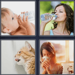 4-pics-1-word-5-letters-drink