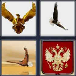 4-pics-1-word-5-letters-eagle