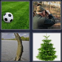 4-pics-1-word-5-letters-green