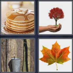 4-pics-1-word-5-letters-maple
