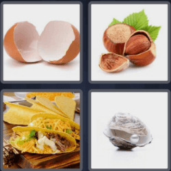 4-pics-1-word-5-letters-shell