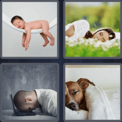 4-pics-1-word-5-letters-sleep