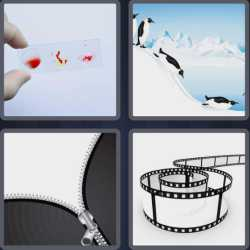 4-pics-1-word-5-letters-slide