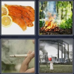 4-pics-1-word-5-letters-smoke