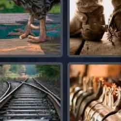 4 Pics 1 Word 5 Letters Spurs