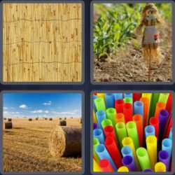 4-pics-1-word-5-letters-straw