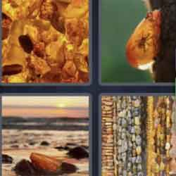 4 Pics 1 Word 5 Letters Amber