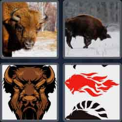 4-pics-1-word-5-letters-bison