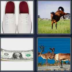 4-pics-1-word-5-letters-bucks