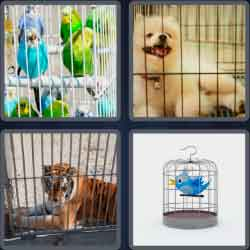 4-pics-1-word-5-letters-caged