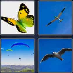 4-pics-1-word-5-letters-glide