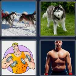 4-pics-1-word-5-letters-husky