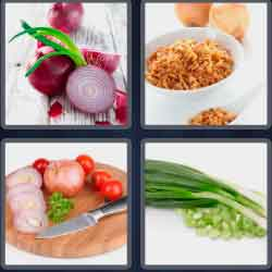 4-pics-1-word-5-letters-onion