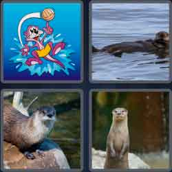 4-pics-1-word-5-letters-otter